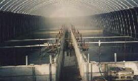 すっぽん養殖池写真2
